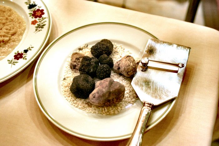 Trufflemania in Croatian Istria or Slovenian Istria – Exclusive